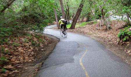 Los Gatos Creek Trail