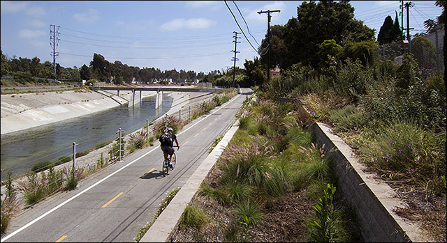 Bioswale alongside Ballona Creek bikepath in Culver City